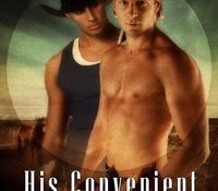 Throwback Thursday Review: His Convenient Husband by JL Langley