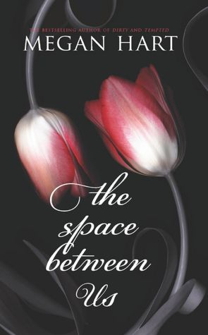 Throwback Thursday Guest Review: The Space Between Us by Megan Hart