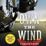 Own the Wind by Kristen Ashley Book Cover