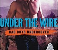 Guest Review: Under the Wire by HelenKay Dimon