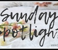 Sunday Spotlight: The One for You by Roni Loren