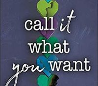 Review: Call It What You Want by Brigid Kemmerer