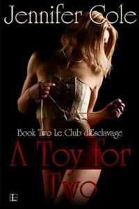Guest Review: A Toy For Two by Jennifer Cole